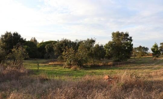 2.6ha Land in Melides