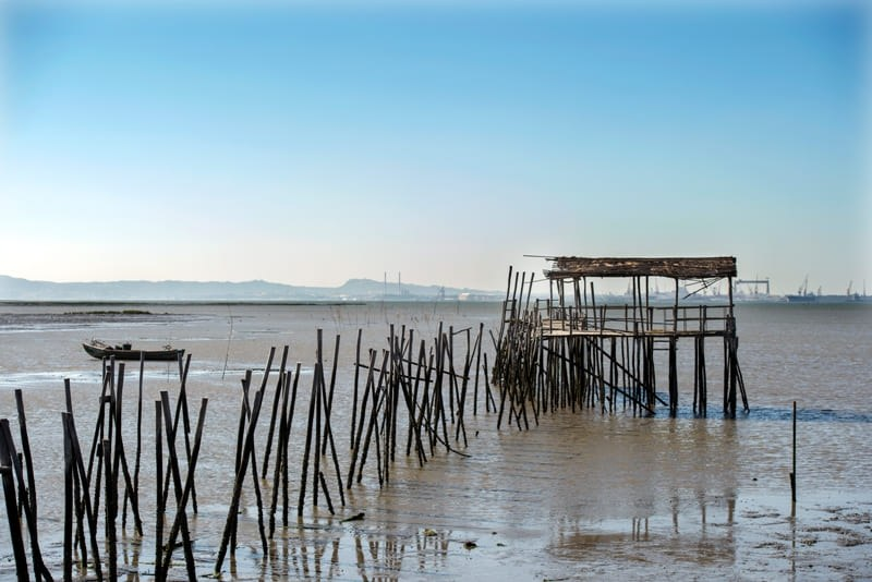 Carrasqueira Comporta Portugal