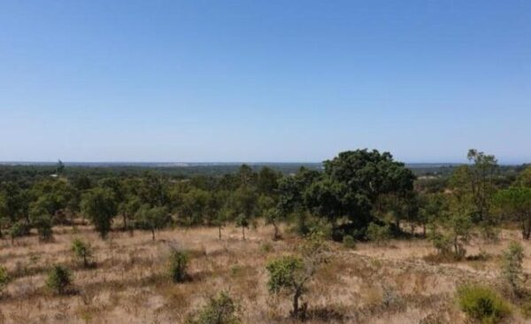 12ha Sea-View near Melides near Santo Andre
