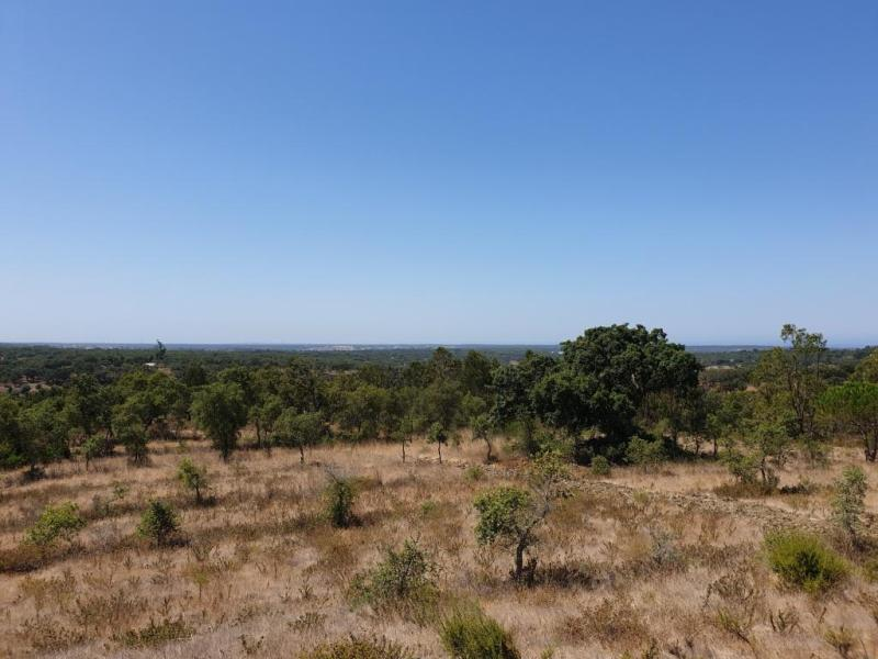 Land in Santo Andre with Sea-View
