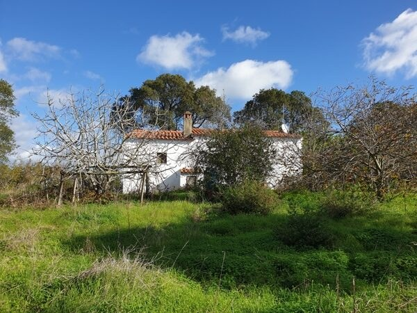 1.5ha Property in Melides